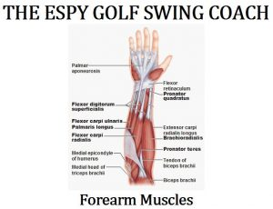 Golf Swing Mechanics
