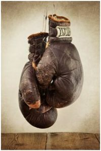 EVERLAST Boxing gloves.
