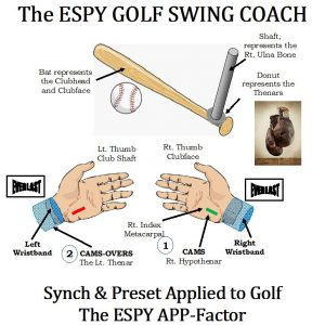 baseball swing sequence
