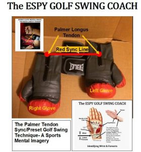 The Palmer tendon golf swing technique for Sports Mental Imagery.