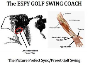 The Picture Perfect Preset golf swing sequence to sync the golfer's elbows with their shoulders. This was a technique Arnold Palmer gave to the President before a Pro-Am