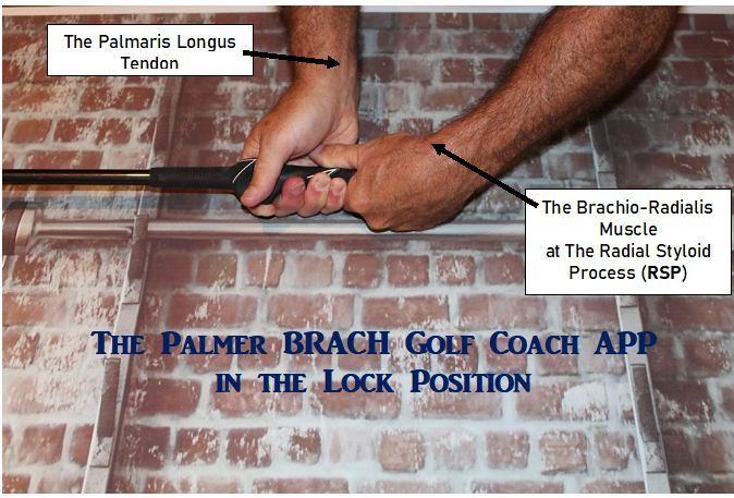 This image has an empty alt attribute; its file name is Palmer-BRACK-LOCK-Position-1.jpg